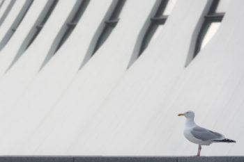 Le Volcan. Architecte : Oscar Niemeyer. Le Havre