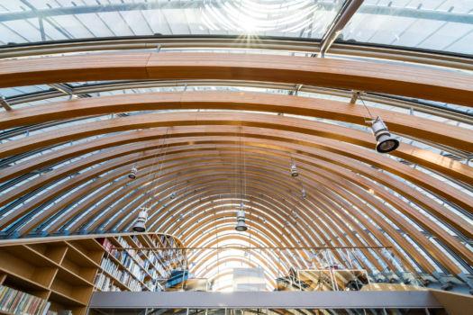 Fondation Seydoux-Pathé. Architecte : Renzo Piano