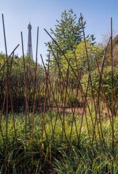 Jardin du Quai Branly. Architecte : Jean Nouvel / Paysagiste : Gilles Clément