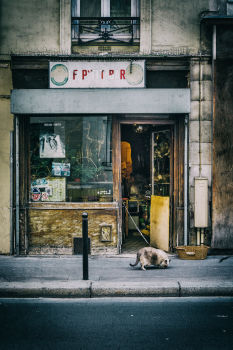 Le P'tit bar. Rue Richard Lenoir, 11e