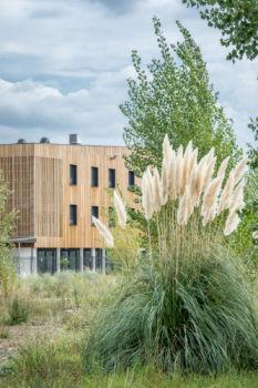 Institut médico-pédagogique Saint Joseph. BDM architectes