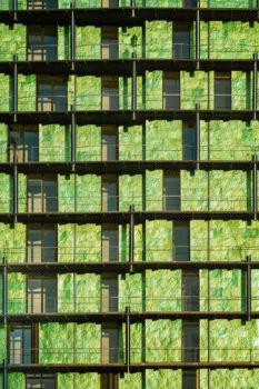 Tour de la Biodiversité. Architecte : Édouard François. Paris 13e ZAC Rive Gauche