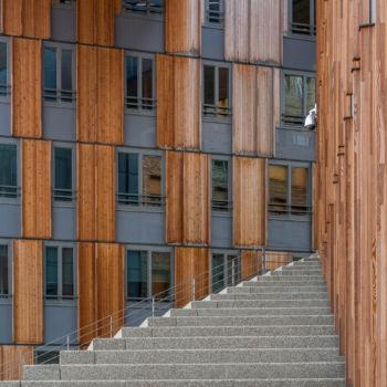 Le Monolithe. Lyon Confluence. Architecte : Erick Van Egeraat
