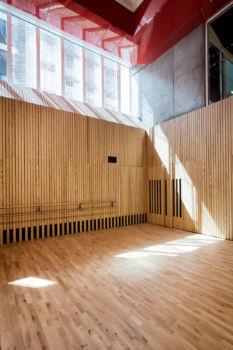 AAVP - Vincent Parreira - Immeuble Less à Paris - 5